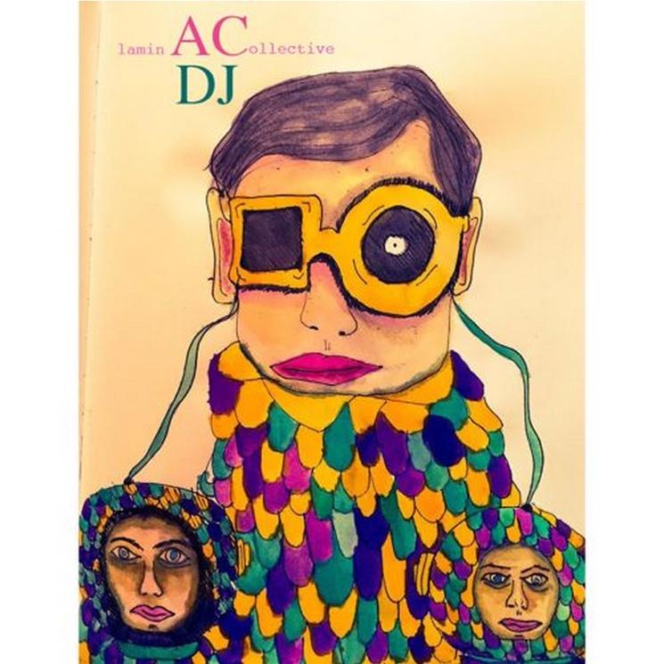 Animal Collective 'Washington, DC DJ Set 2/8/15'