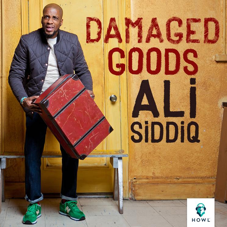 Ali Siddiq Damaged Goods