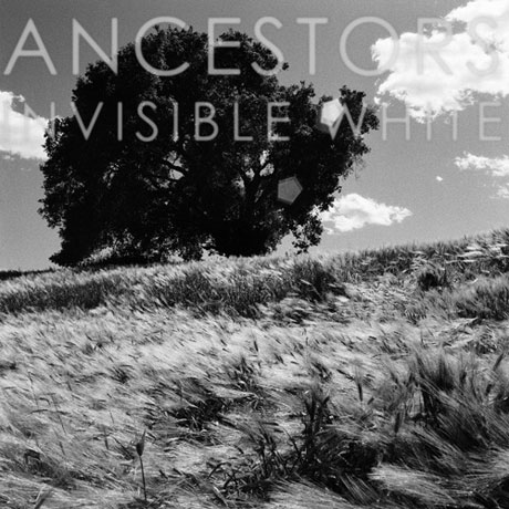 Ancestors Invisible White