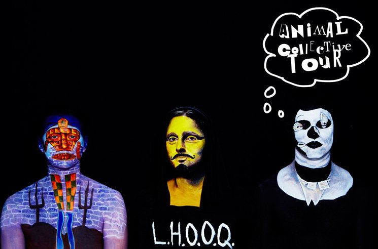 Animal Collective to Play Toronto and Montreal on 2017 Tour