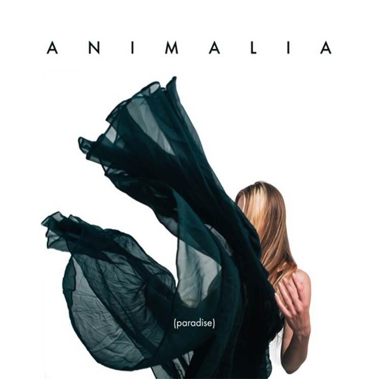 """Animalia """"Paradise"""""""