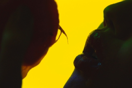 Animal Collective 'Applesauce' (video)