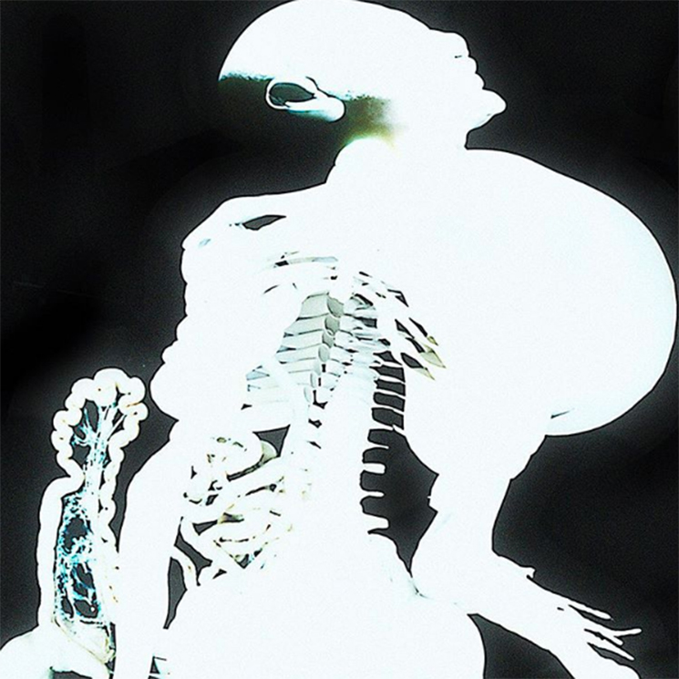 Arca Unleashes Free 'Entranas' Release