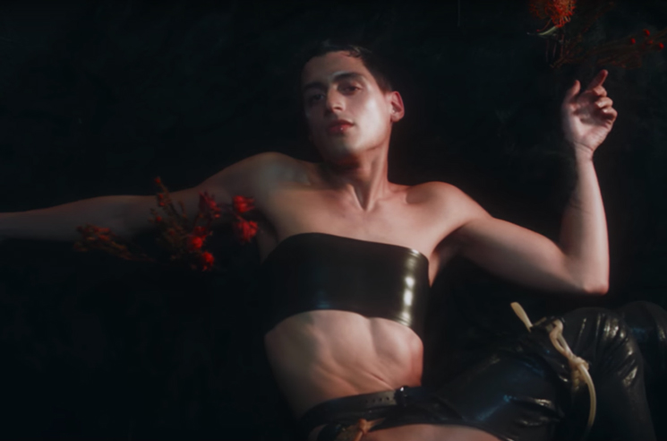 Björk Responds to Fans Getting Upset over Arca Appearing in Her New Video