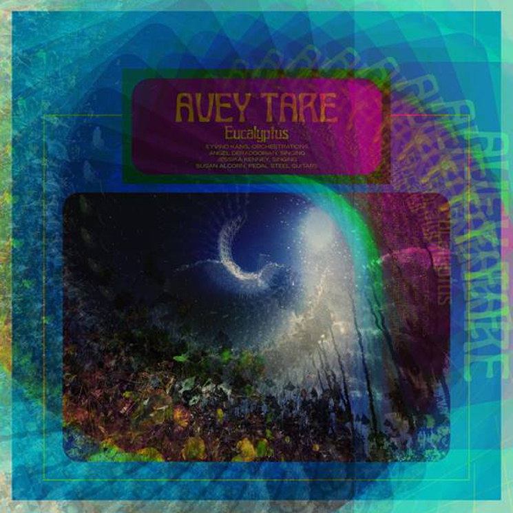 Animal Collective's Avey Tare Details 'Eucalyptus' LP