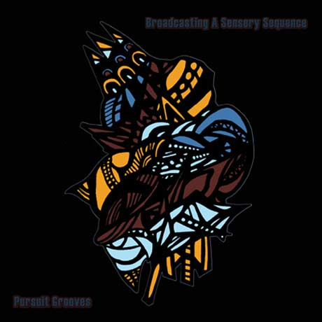 Pursuit Grooves Broadcasting a Sensory Sequence