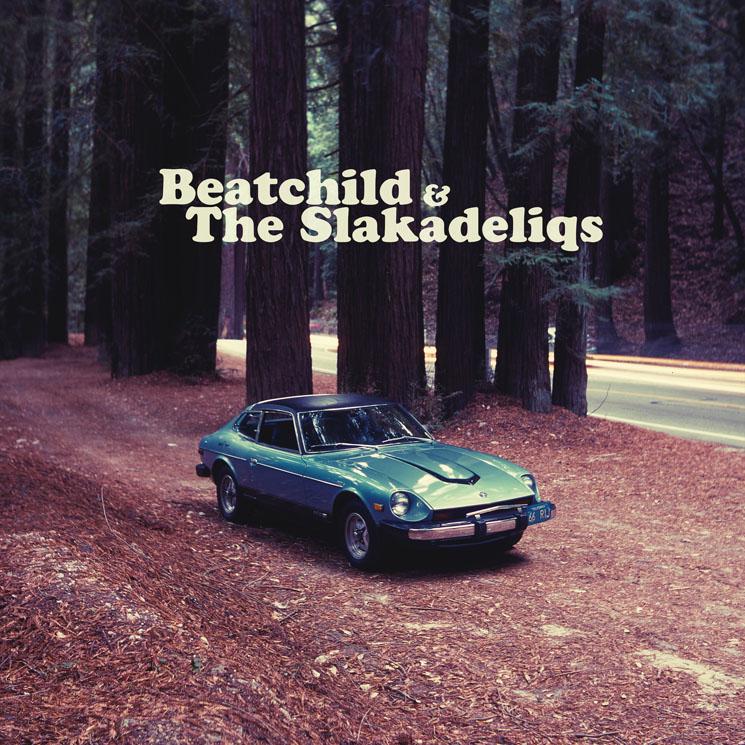Beatchild & the Slakadeliqs Heavy Rockin' Steady