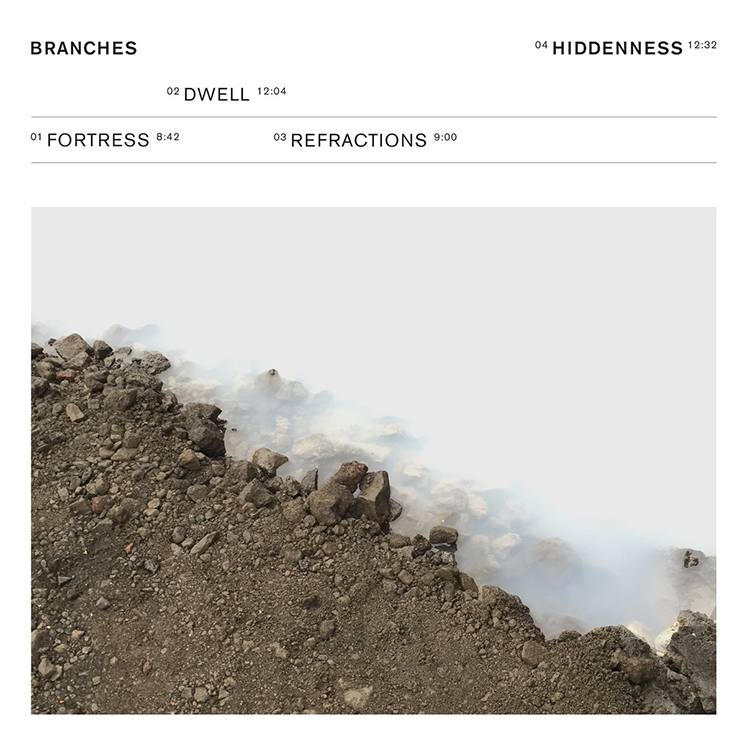 Branches 'Hiddenness'
