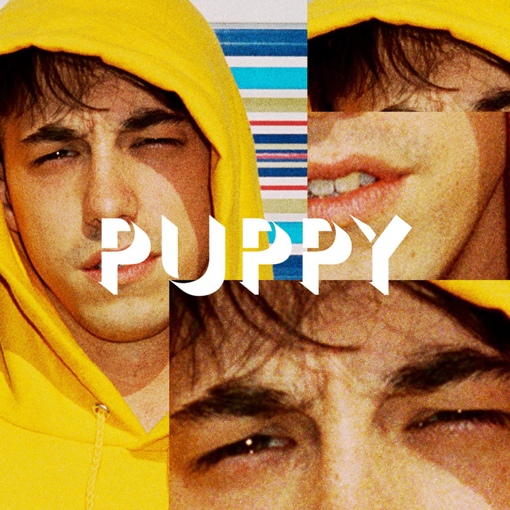 Brockhampton Announce 'Puppy' Album