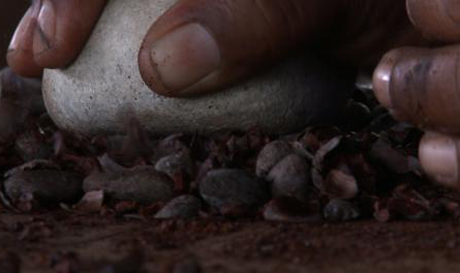 The Chocolate Farmer Rohan Fernando