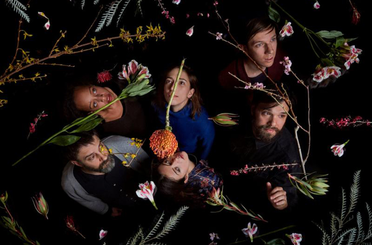 Dirty Projectors Map Out World Tour