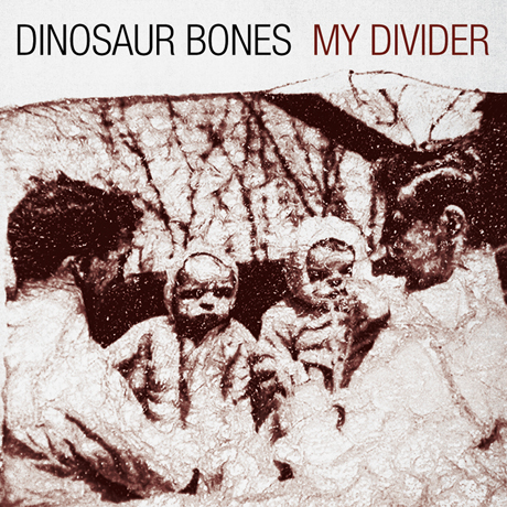 "Dinosaur Bones ""Point of Pride"""