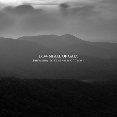 Downfall of Gaia Suffocating in the Swarm of Cranes