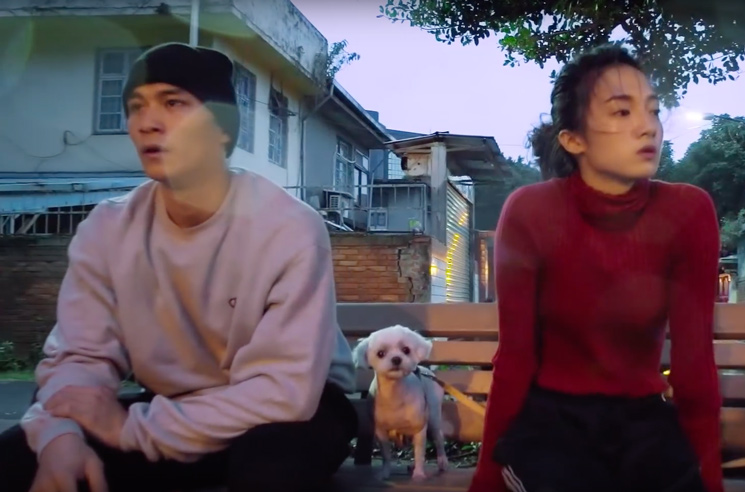 "Homeshake ""Every Single Thing"" (video)"