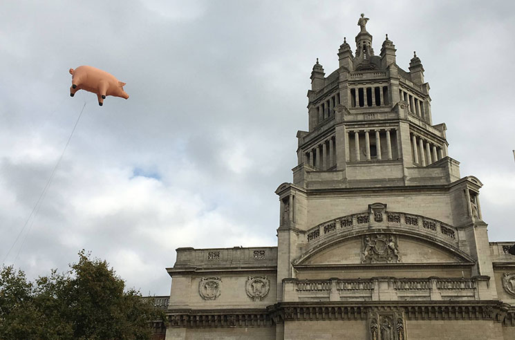 Pink Floyd's 'Animals' Pig Takes Flight to Announce New Retrospective Exhibit