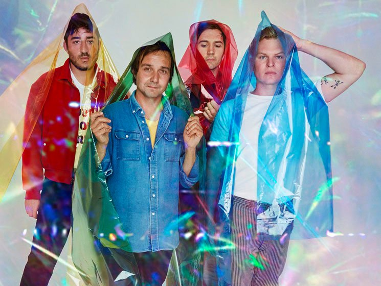​Grizzly Bear Maximizing Minimalism