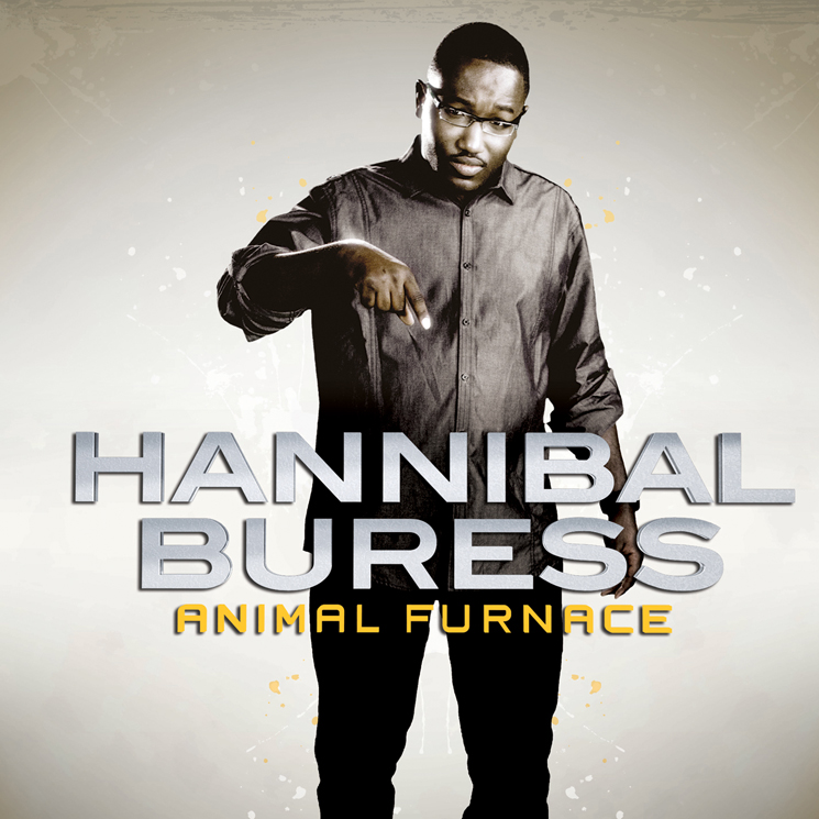 Hannibal Buress Animal Furnace