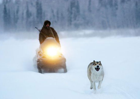 Happy People: A Year in the Taiga Dmitry Vasyukov and Werner Herzog
