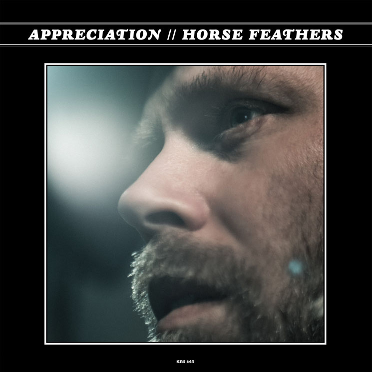 Horse Feathers Appreciation