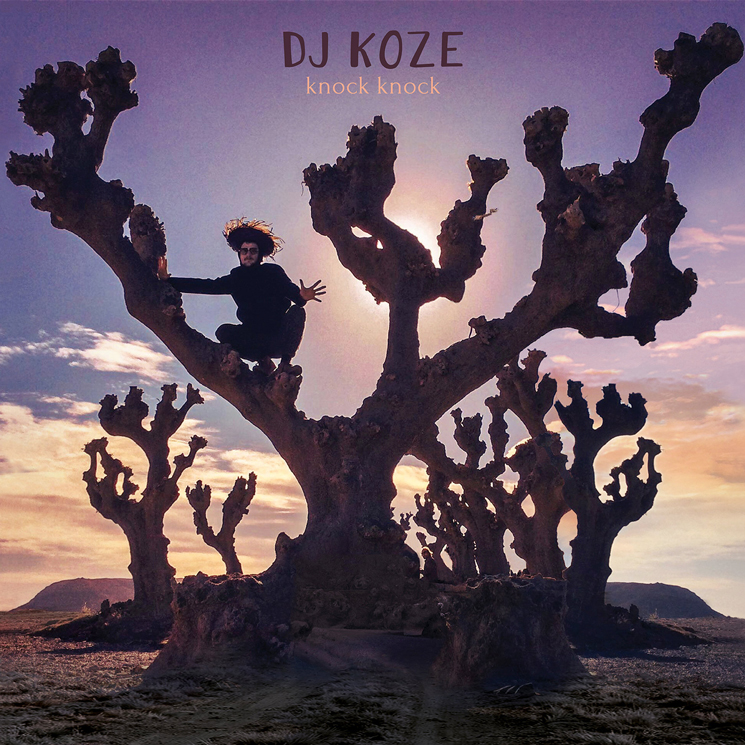 DJ Koze 'Knock Knock' (album stream)
