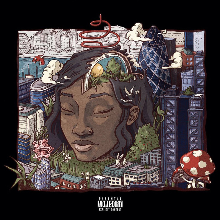 Little Simz Stillness in Wonderland
