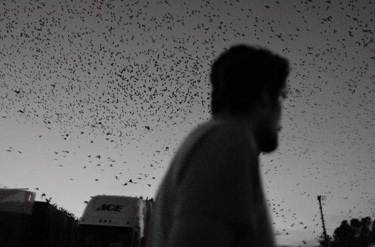 "My Empty Phantom ""Forever"" (video)"