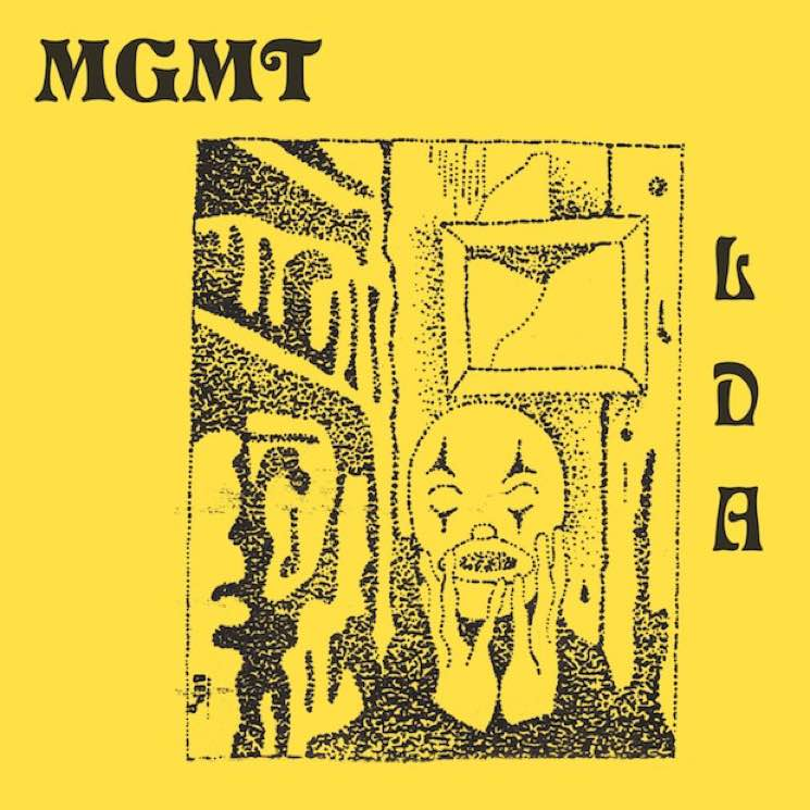 MGMT Detail 'Little Dark Age' Album