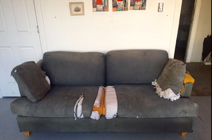 You Can Now Own Mac DeMarco's Ratty Old Couch