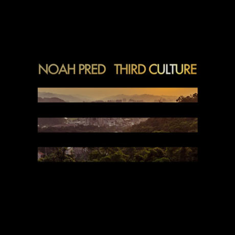 Noah Pred Third Culture