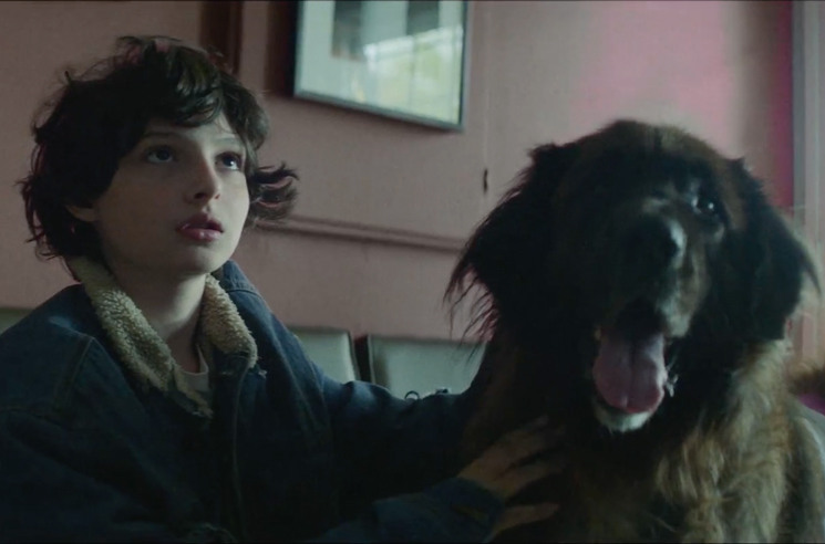 PUP and 'Stranger Things' Actor Finn Wolfhard Team Up for New Video