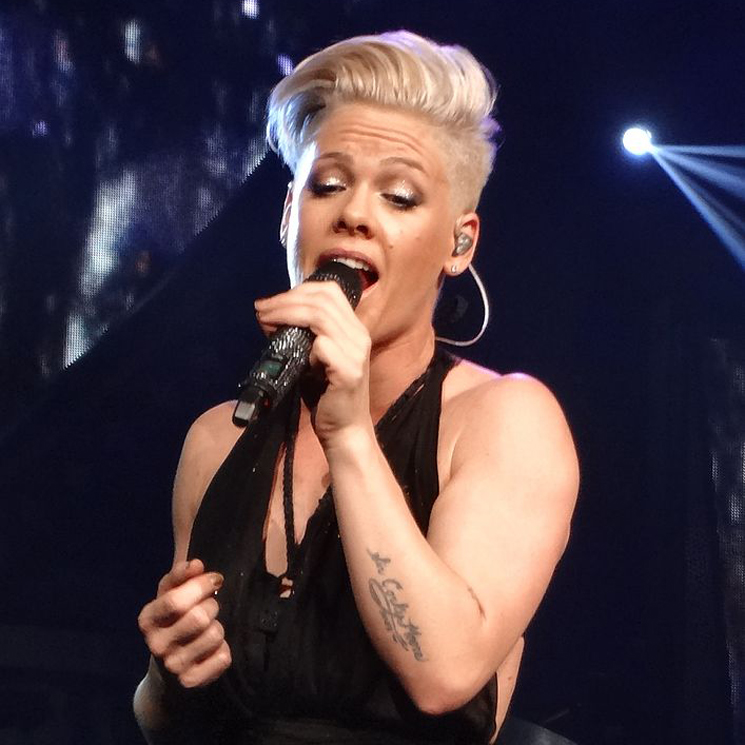 P!nk on Dr. Luke: 'This Is His Karma and He Earned It Because He's Not a Good Person'