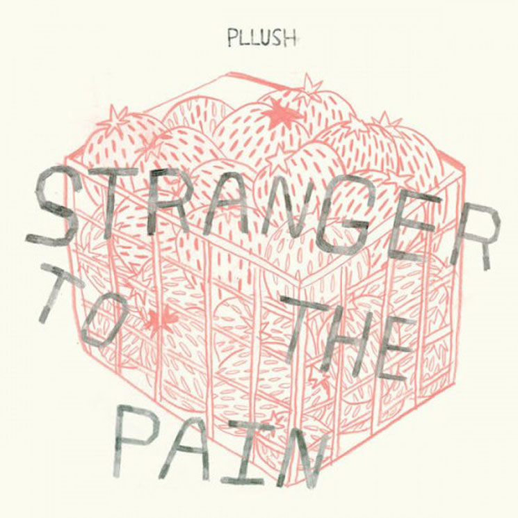 Pllush Stranger to the Pain