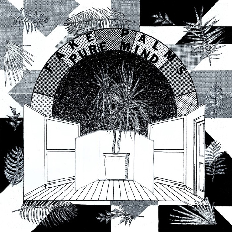 Fake Palms Unveil Sophomore 'Pure Mind' LP