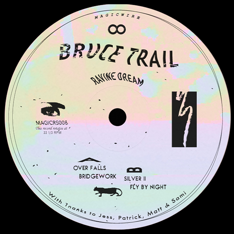 Bruce Trail Ravine Dream