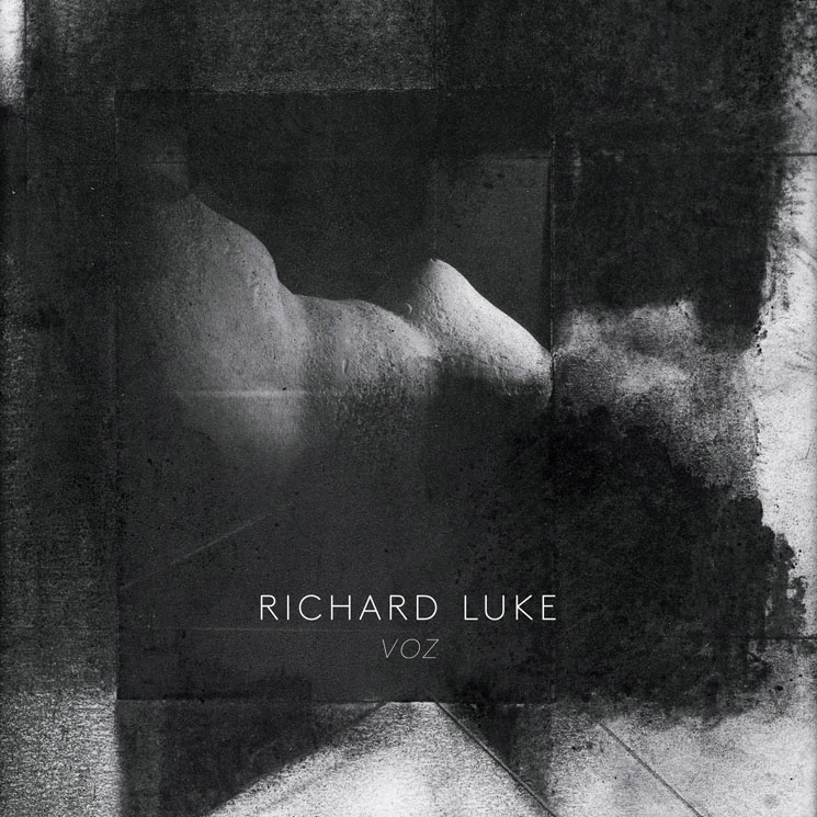 Richard Luke Voz