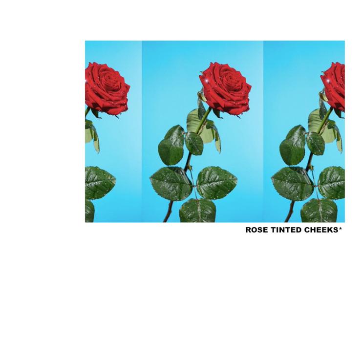 Tyler, the Creator 'ROSE TINTED CHEEKS'