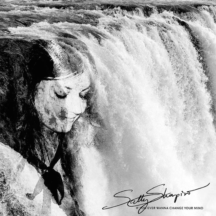 Sally Shapiro Break Up, Share Final Single