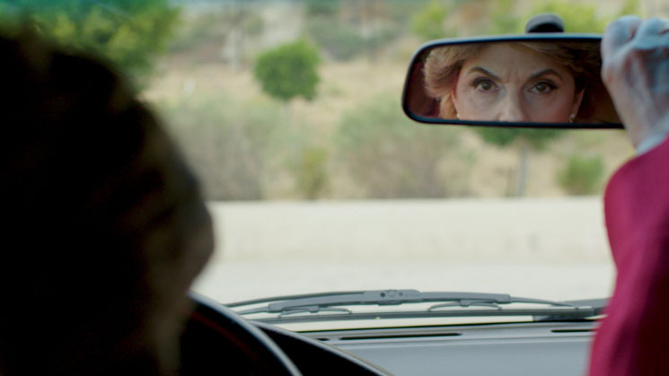 SUNDANCE: Seeing Allred Directed by Roberta Grossman and Sophie Sartain