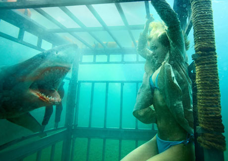 Shark Night [Blu-Ray] David R. Ellis
