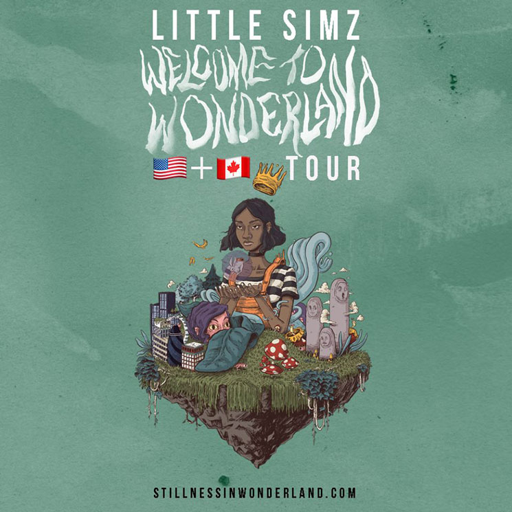 "Little Simz Plots North American ""Welcome to Wonderland Tour"""