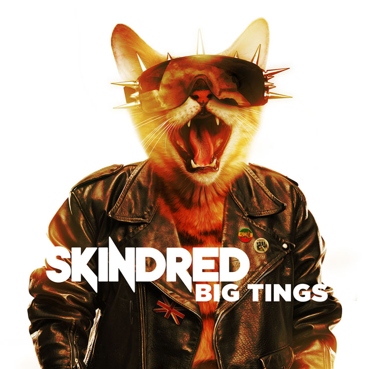 Skindred Big Tings
