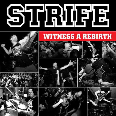 Strife Witness a Rebirth