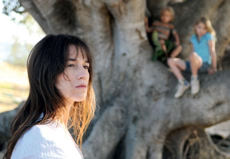 The Tree Julie Bertuccelli