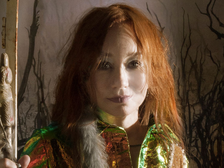 Five Noteworthy Facts You May Not Know About Tori Amos