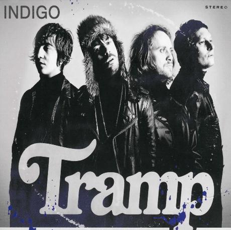Tramp Indigo