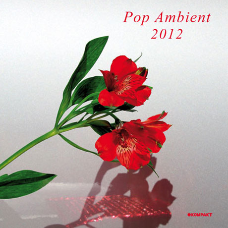 Various Pop Ambient 2012