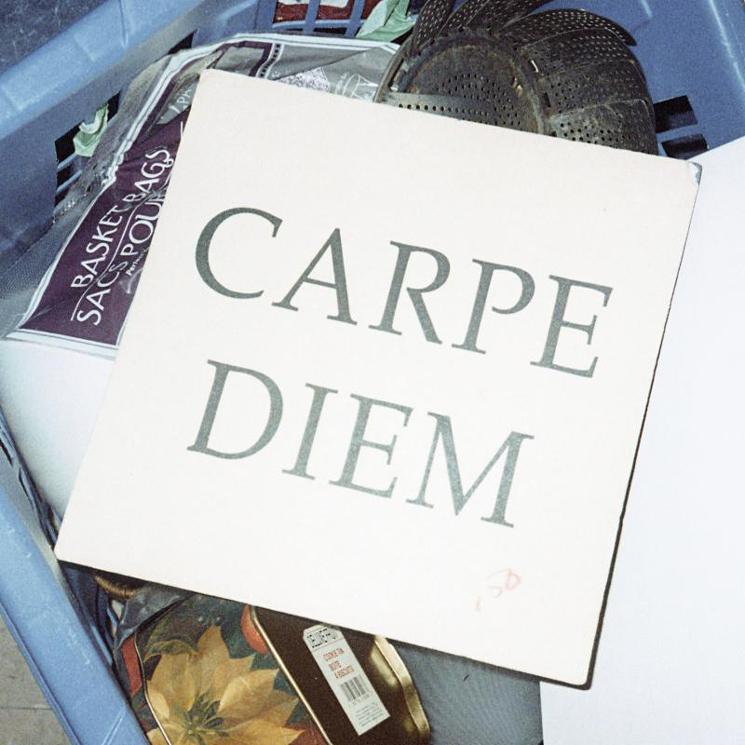 Walter TV Return with 'Carpe Diem'