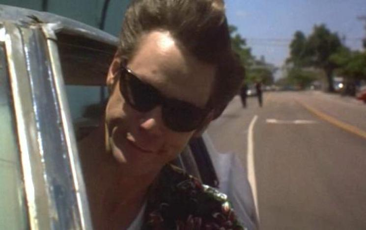 Man Crashes into Tree After Driving 'Like Ace Ventura' with Head Out Window