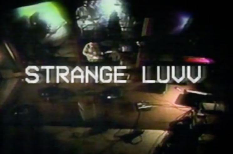"""Adam Strangler """"Strange Luvv"""" (video)"""
