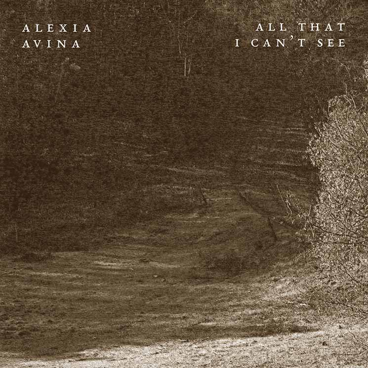 Alexia Avina All That I Can't See